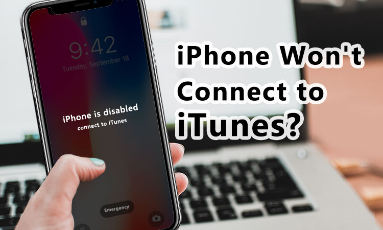 iPhone won't connect to itunes